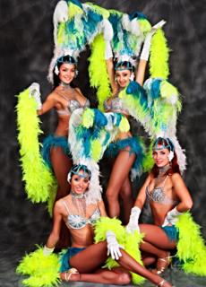 Шоу-балет в Пушкино, Шоу-балет в мытищи, шоу-балет на новый год